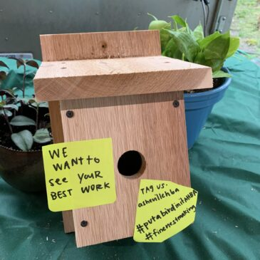 Build your own Birdhouse Competition